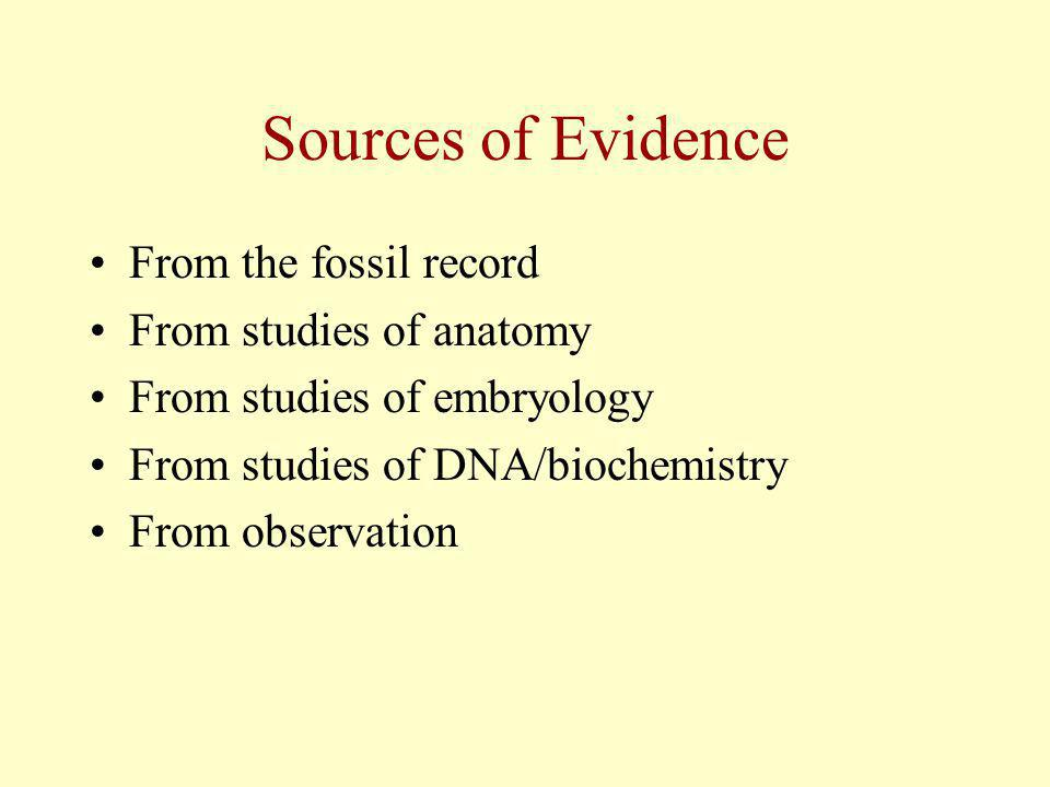 Transitional Organisms If evolution has occurred in the past there should be evidence of transitional organisms in the fossil record.