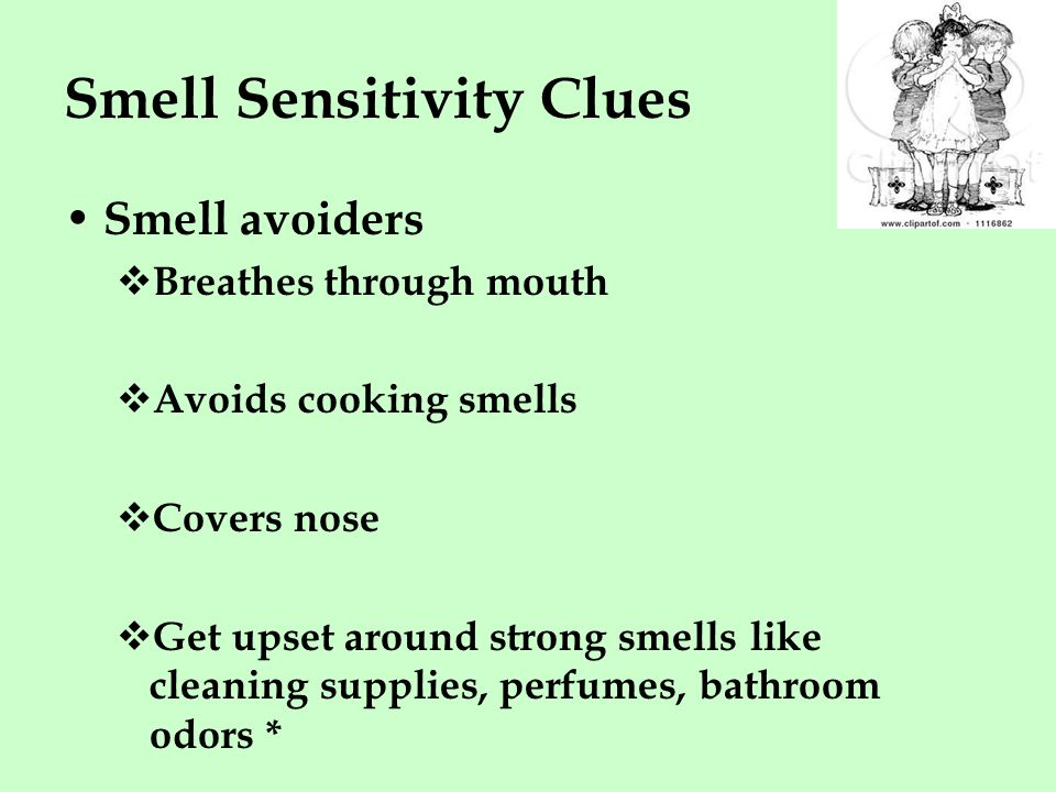 Smell Sensitivity Clues Smell avoiders  Breathes through mouth  Avoids cooking smells  Covers nose  Get upset around strong smells like cleaning supplies, perfumes, bathroom odors *