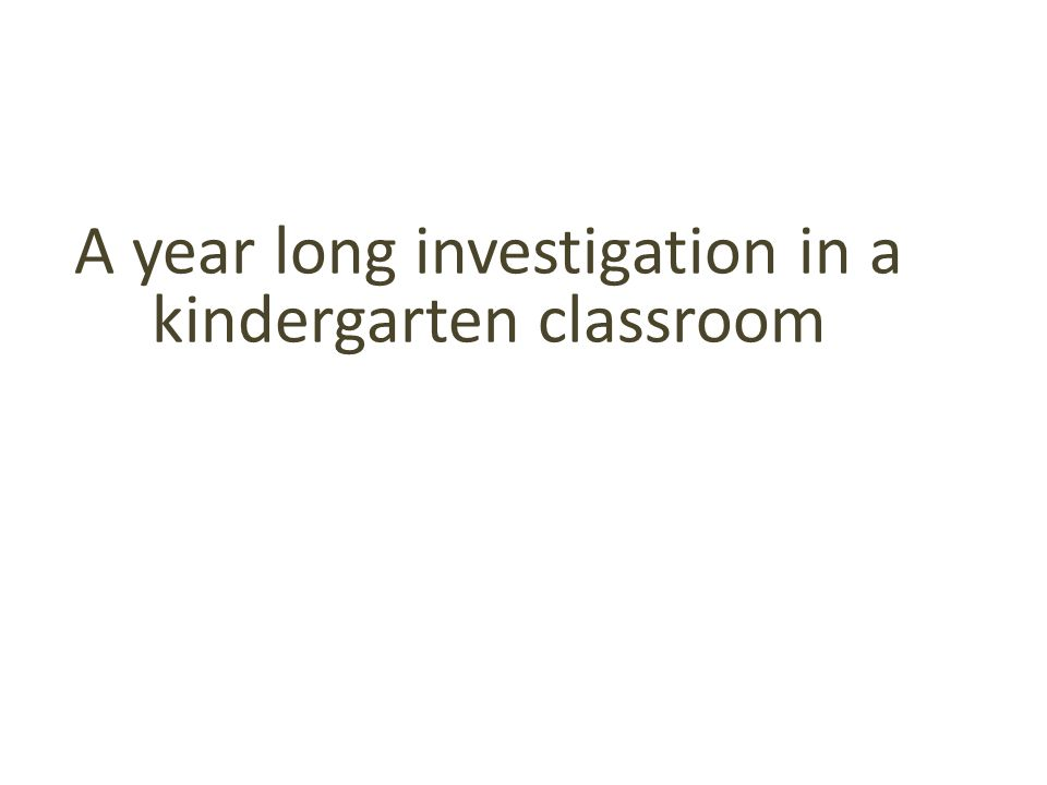A year long investigation in a kindergarten classroom