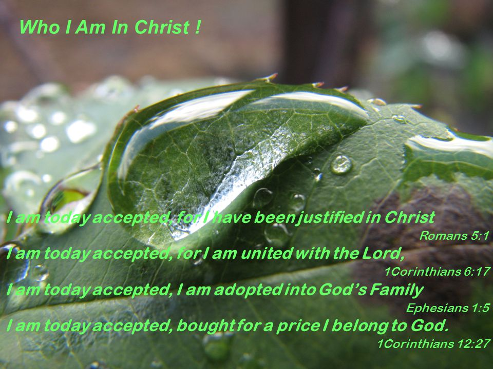 I am today accepted, for I have been justified in Christ Romans 5:1 I am today accepted, for I am united with the Lord, 1Corinthians 6:17 I am today accepted, I am adopted into God's Family Ephesians 1:5 I am today accepted, bought for a price I belong to God.
