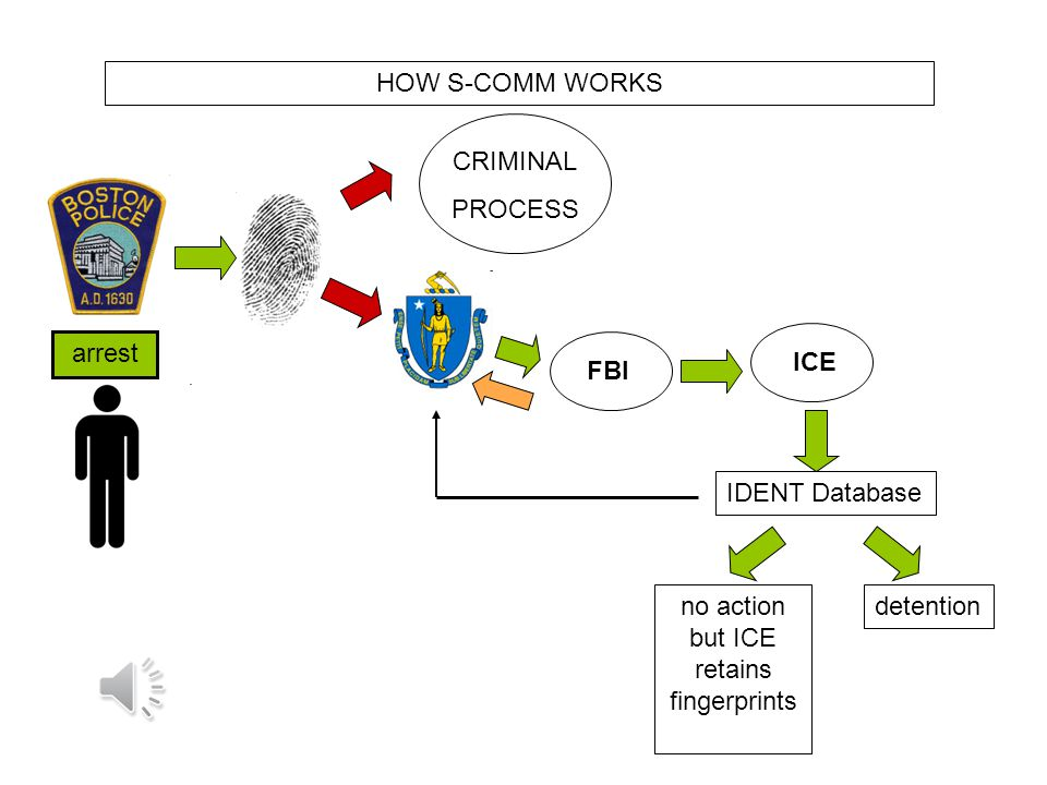 arrest CRIMINAL PROCESS ICE no action but ICE retains fingerprints IDENT Database HOW S-COMM WORKS FBI
