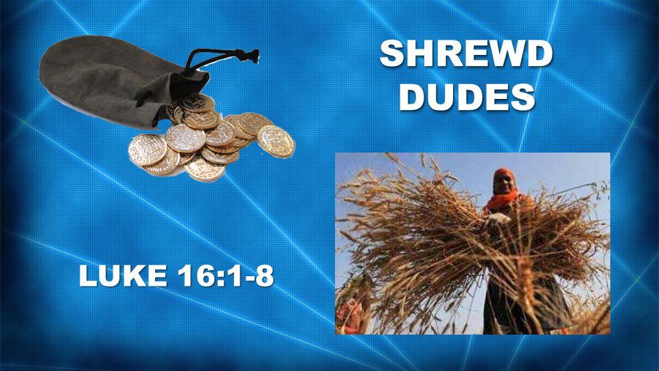 SHREWD DUDES LUKE 16:1-8