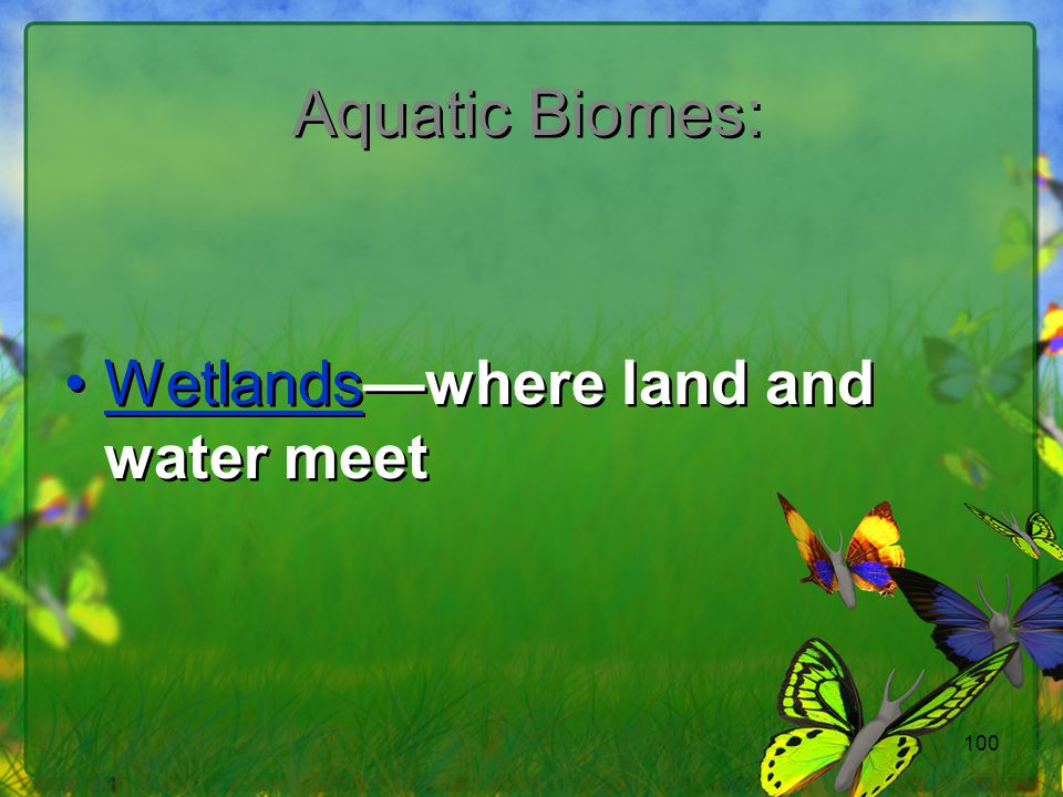 100 Aquatic Biomes: Wetlands—where land and water meet