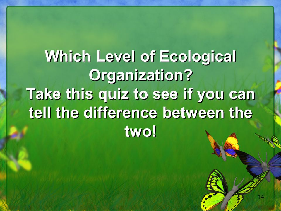 14 Which Level of Ecological Organization? Take this quiz to see if you can tell the difference between the two!