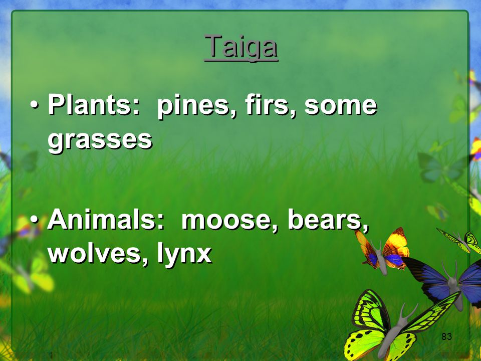 83 Taiga Plants: pines, firs, some grasses Animals: moose, bears, wolves, lynx Plants: pines, firs, some grasses Animals: moose, bears, wolves, lynx