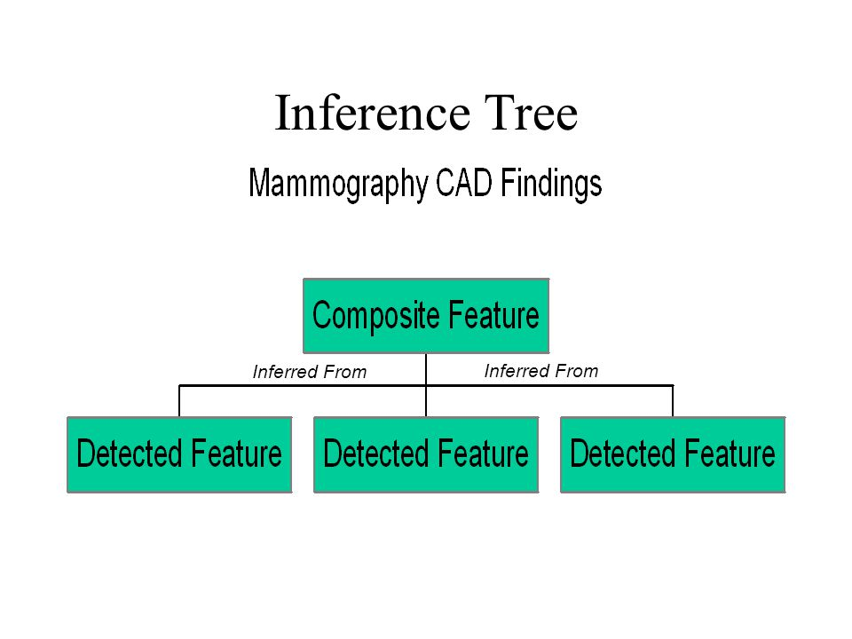 Inference Tree Inferred From