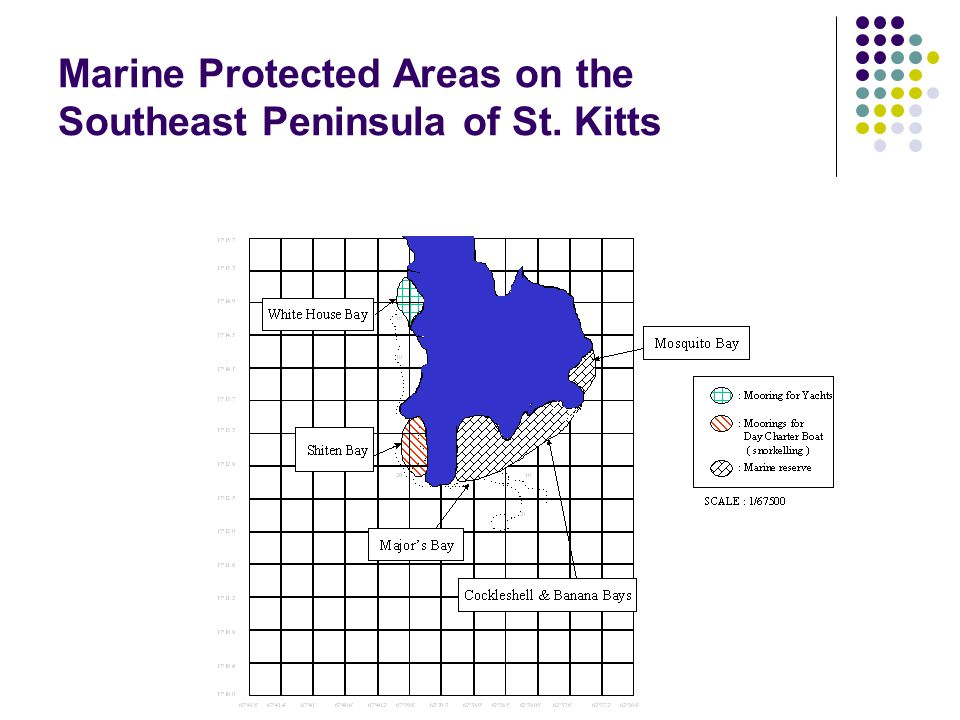 Marine Protected Areas on the Southeast Peninsula of St. Kitts