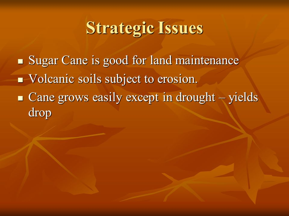 Strategic Issues Sugar Cane is good for land maintenance Sugar Cane is good for land maintenance Volcanic soils subject to erosion.