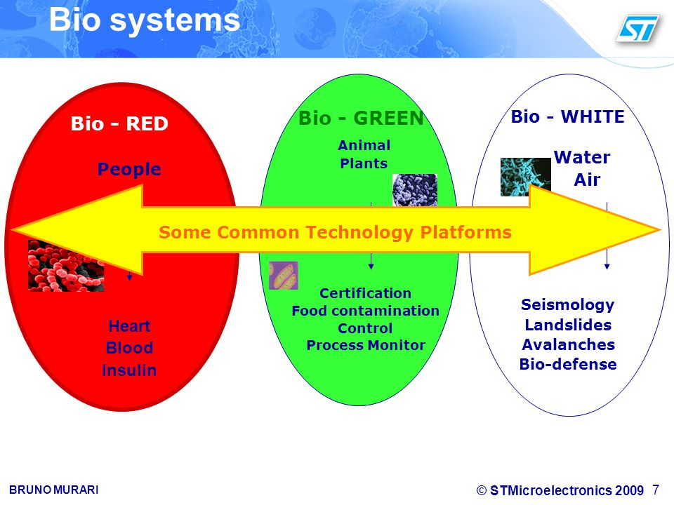 © STMicroelectronics 2009 BRUNO MURARI 7 Bio systems Heart Blood Insulin Certification Food contamination Control Process Monitor Seismology Landslides Avalanches Bio-defense Bio - WHITE Water Air Bio - RED People Bio - GREEN Animal Plants Some Common Technology Platforms