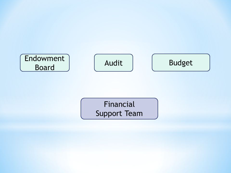Financial Support Team Endowment Board Audit Budget