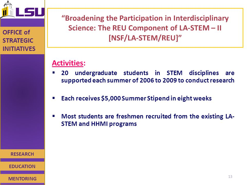 RESEARCH EDUCATION MENTORING OFFICE of STRATEGIC INITIATIVES Broadening the Participation in Interdisciplinary Science: The REU Component of LA-STEM – II [NSF/LA-STEM/REU] Activities:  20 undergraduate students in STEM disciplines are supported each summer of 2006 to 2009 to conduct research  Each receives $5,000 Summer Stipend in eight weeks  Most students are freshmen recruited from the existing LA- STEM and HHMI programs 13