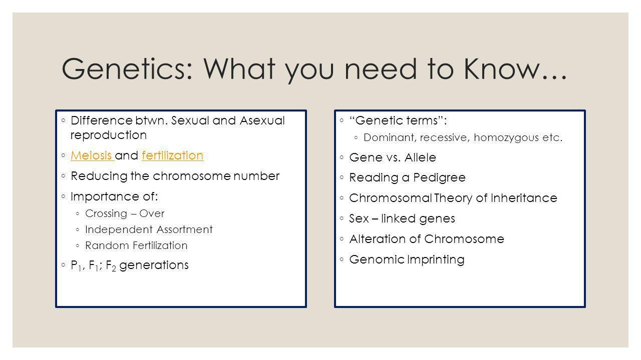 Genetics: What you need to Know… ◦ Difference btwn.