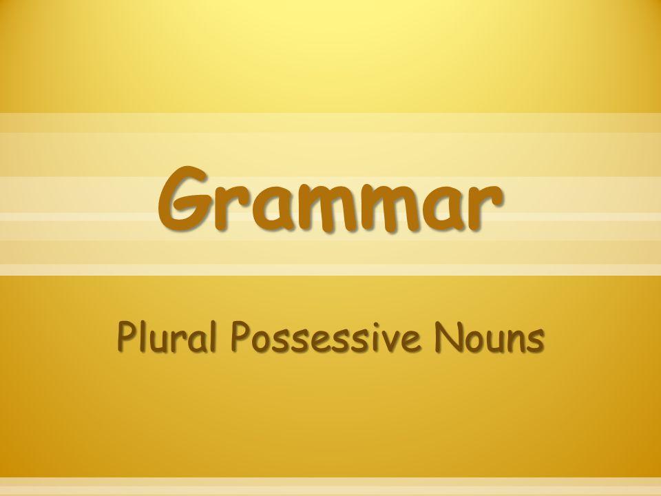 Grammar Plural Possessive Nouns