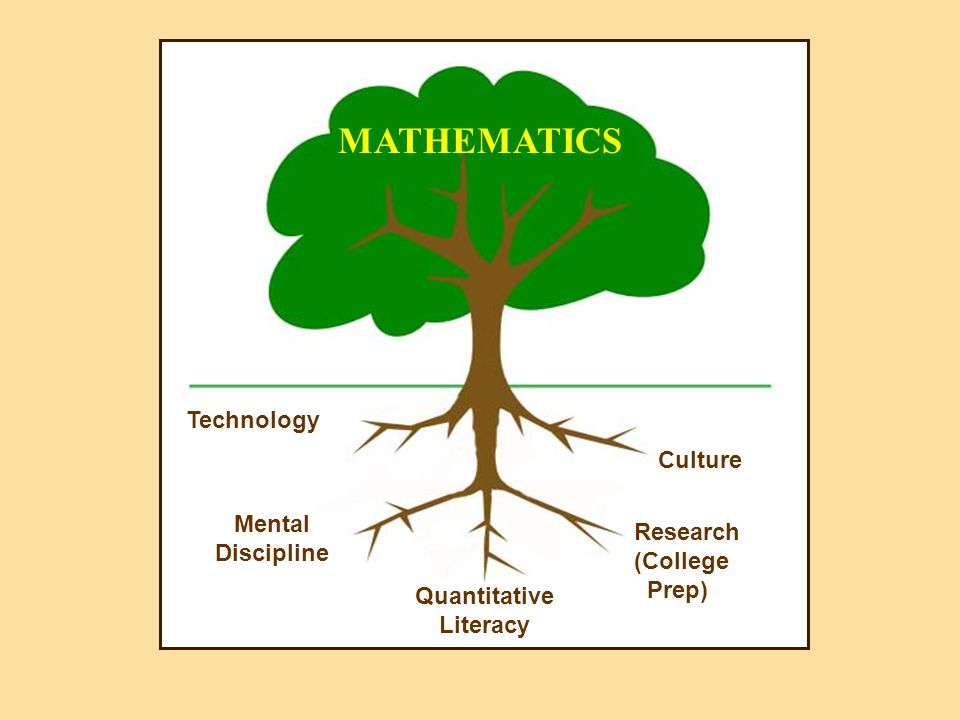 MATHEMATICS Culture Quantitative Literacy Technology Mental Discipline Research (College Prep)
