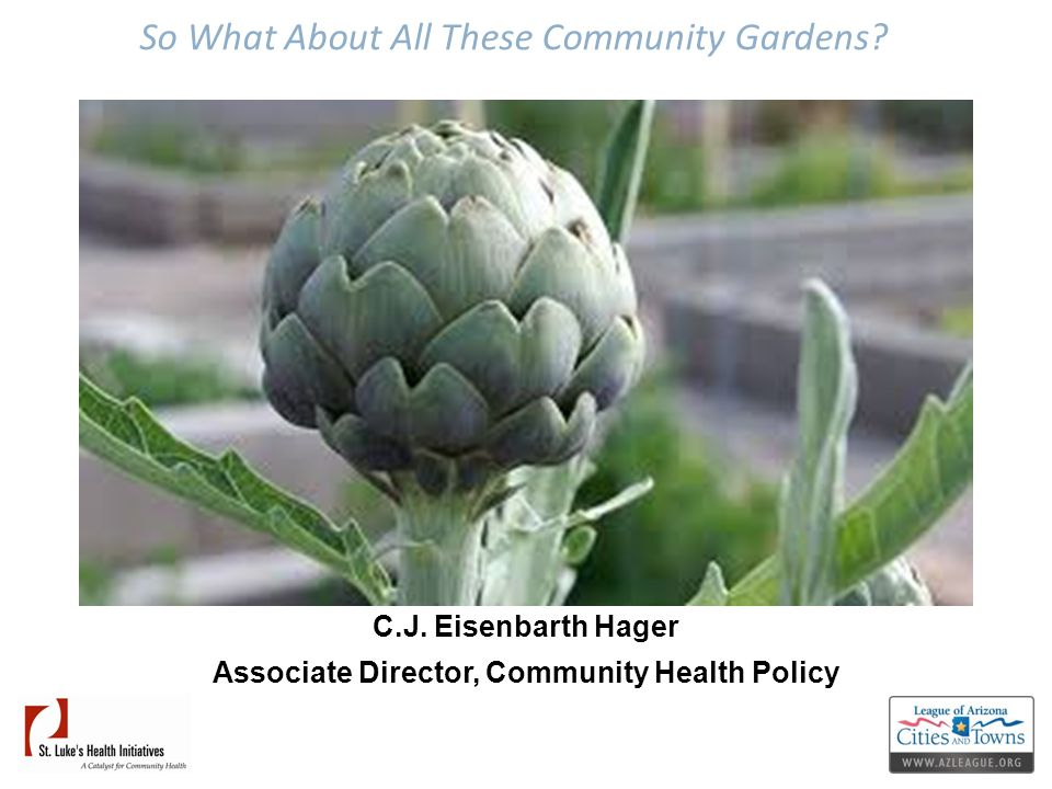 So What About All These Community Gardens? C.J. Eisenbarth Hager Associate Director, Community Health Policy