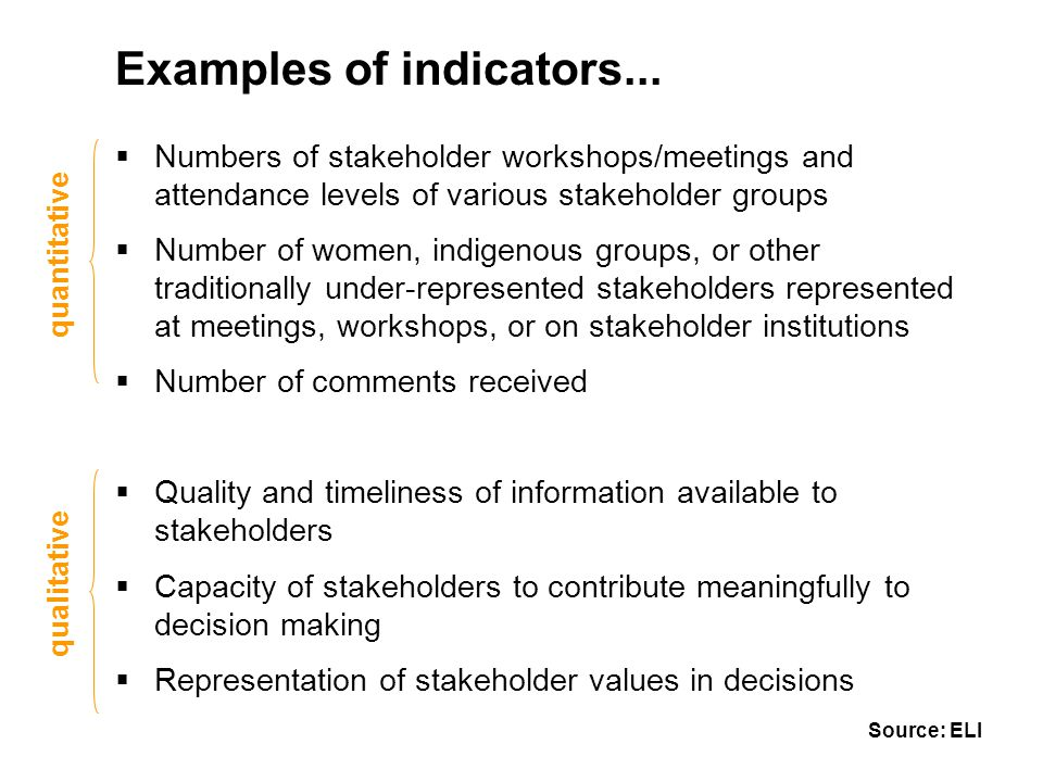 Examples of indicators...  Numbers of stakeholder workshops/meetings and attendance levels of various stakeholder groups  Number of women, indigenou