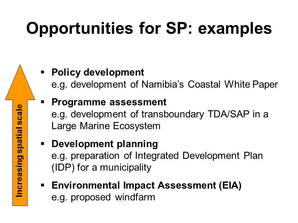 Opportunities for SP: examples  Policy development e.g. development of Namibia's Coastal White Paper  Programme assessment e.g. development of trans
