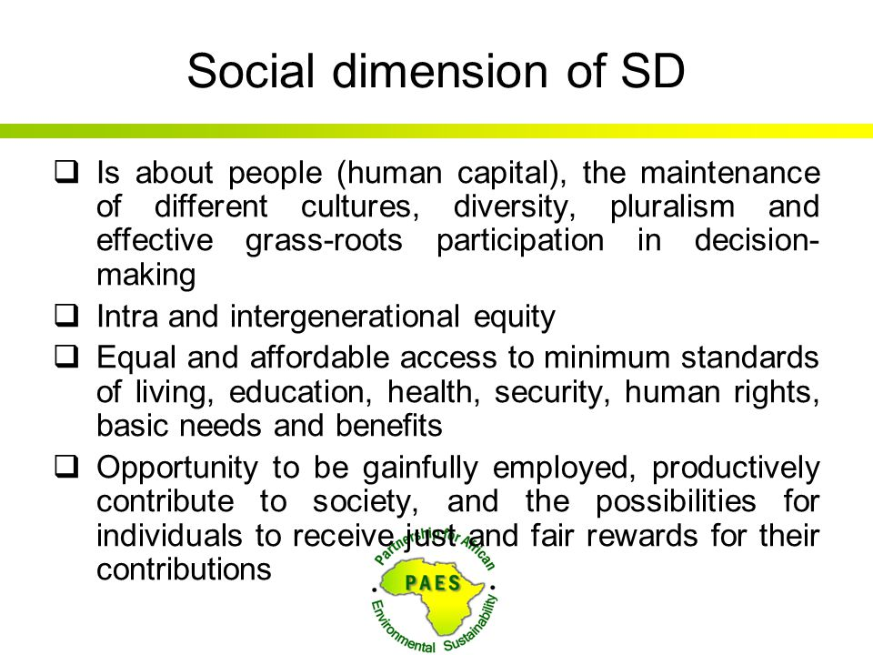 Social dimension of SD  Is about people (human capital), the maintenance of different cultures, diversity, pluralism and effective grass-roots partic
