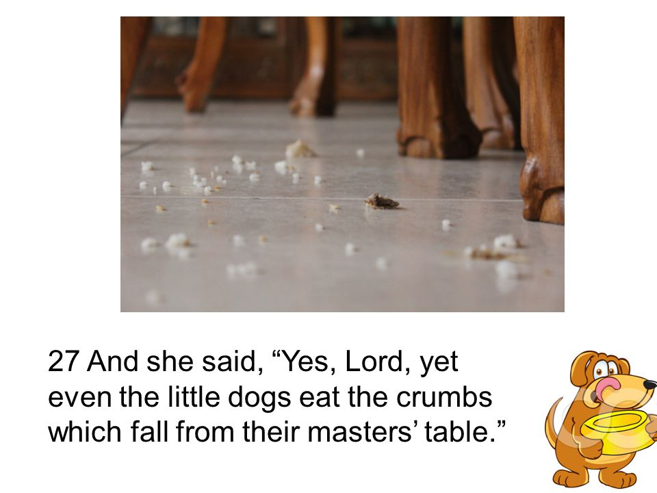 "27 And she said, ""Yes, Lord, yet even the little dogs eat the crumbs which fall from their masters' table."""