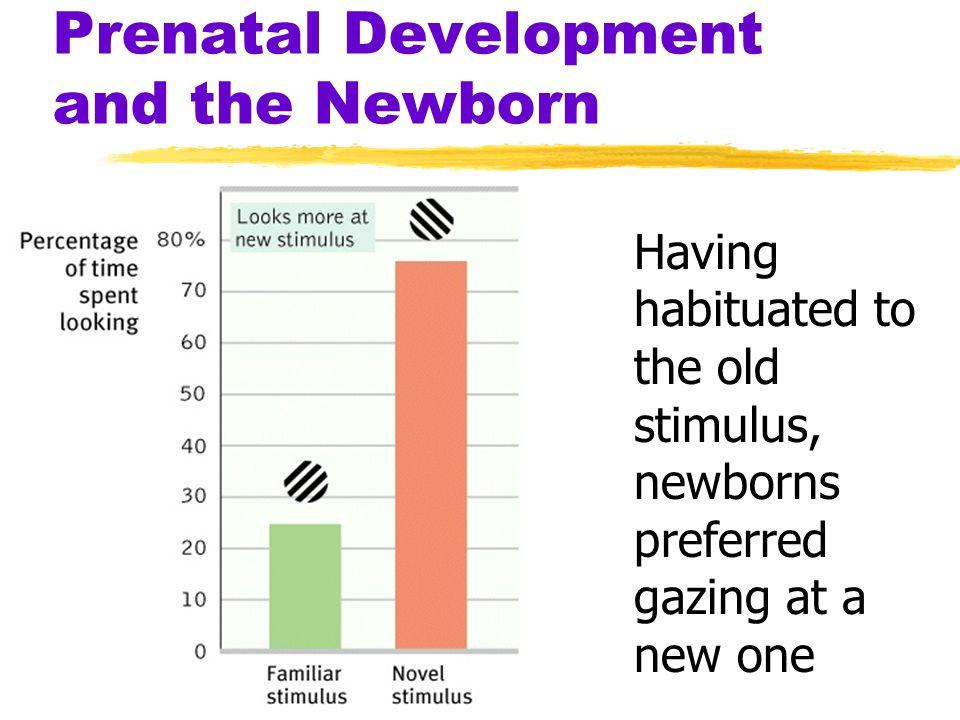 Prenatal Development and the Newborn Having habituated to the old stimulus, newborns preferred gazing at a new one