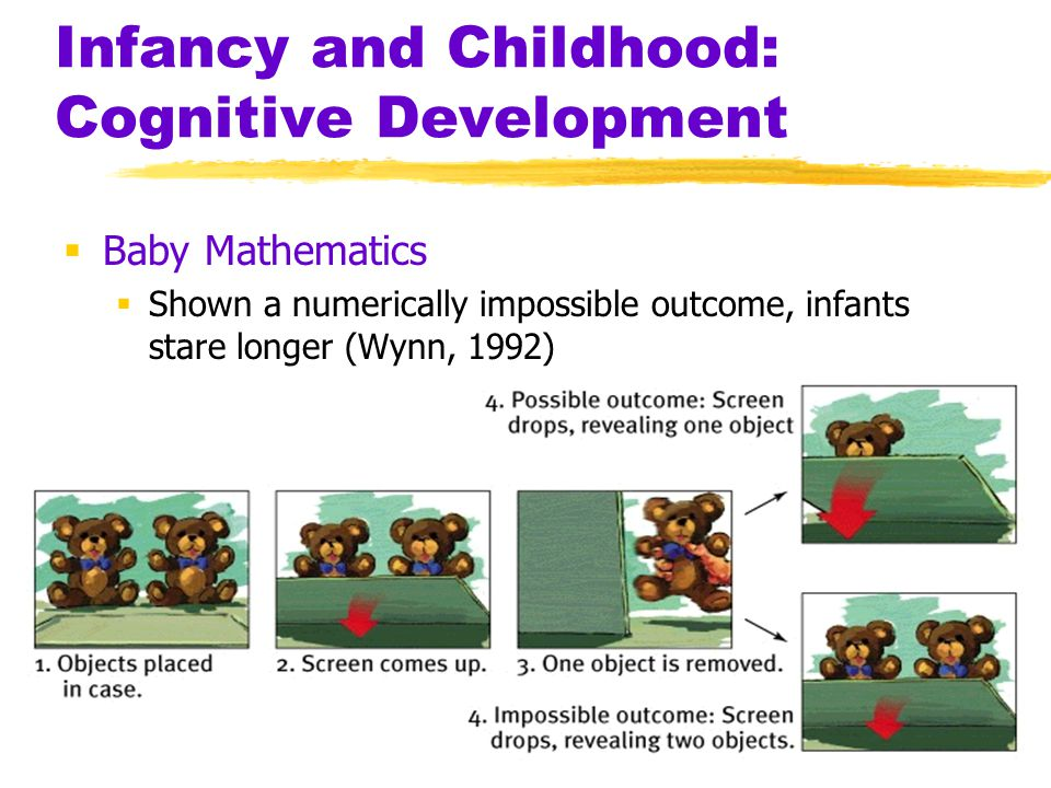 Infancy and Childhood: Cognitive Development  Baby Mathematics  Shown a numerically impossible outcome, infants stare longer (Wynn, 1992)