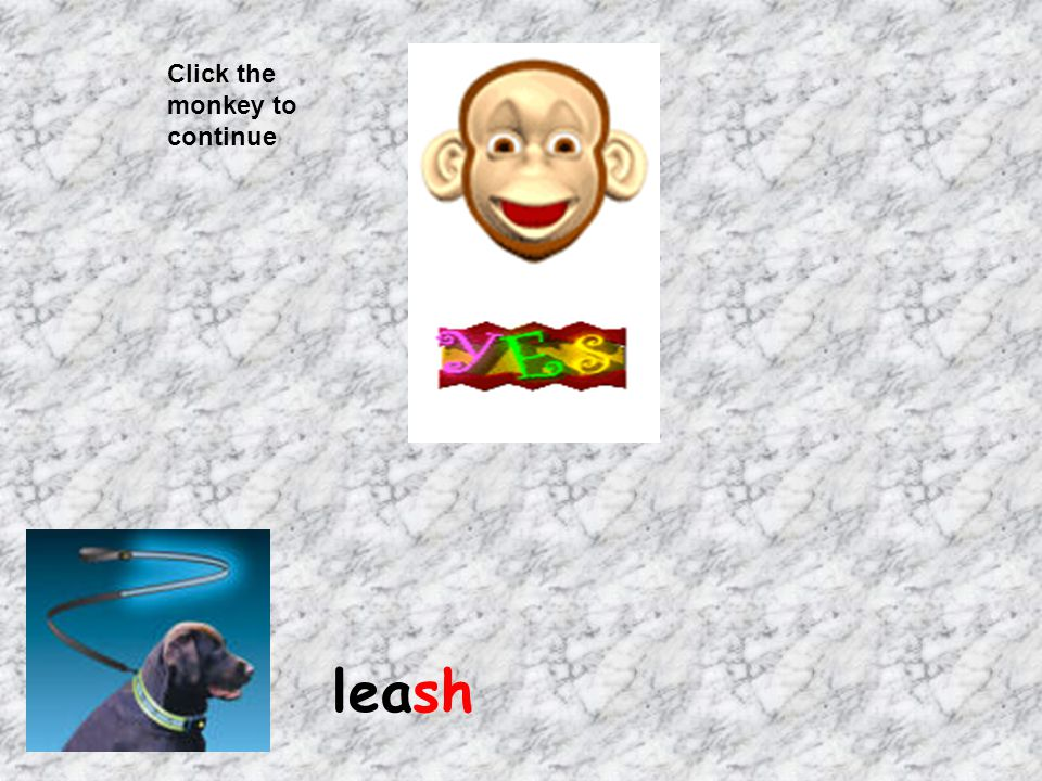 Click the monkey to continue leash