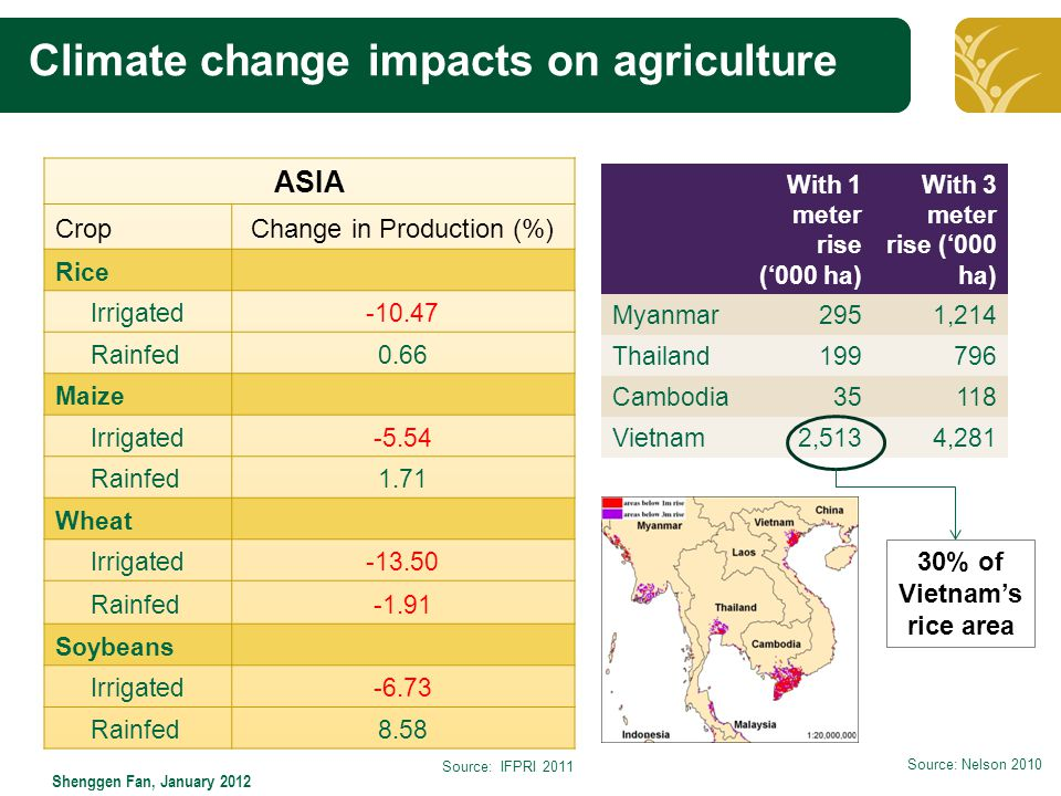 Click to edit Master title style Shenggen Fan, January 2012 Climate change impacts on agriculture ASIA CropChange in Production (%) Rice Irrigated-10.47 Rainfed0.66 Maize Irrigated-5.54 Rainfed1.71 Wheat Irrigated-13.50 Rainfed-1.91 Soybeans Irrigated-6.73 Rainfed8.58 Source: IFPRI 2011 With 1 meter rise ('000 ha) With 3 meter rise ('000 ha) Myanmar2951,214 Thailand199796 Cambodia35118 Vietnam2,5134,281 30% of Vietnam's rice area Source: Nelson 2010
