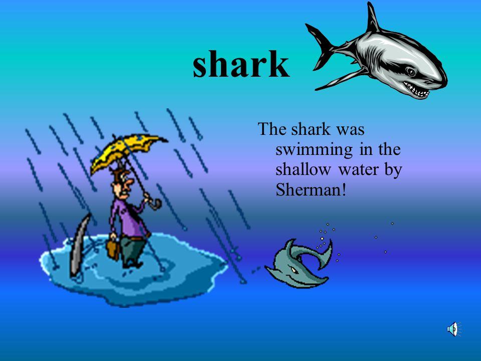 shape Shane's favorite shape is a shamrock.
