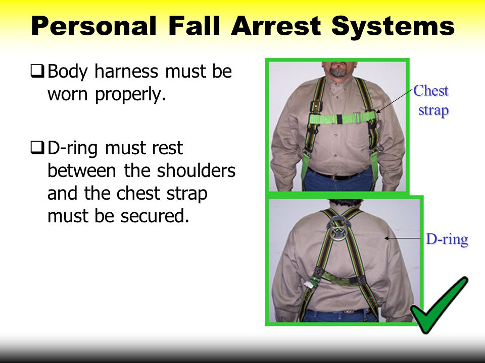 Personal Fall Arrest Systems  Body harness must be worn properly.  D-ring must rest between the shoulders and the chest strap must be secured. D-rin