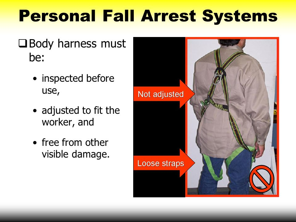 Personal Fall Arrest Systems  Body harness must be: inspected before use, adjusted to fit the worker, and free from other visible damage.