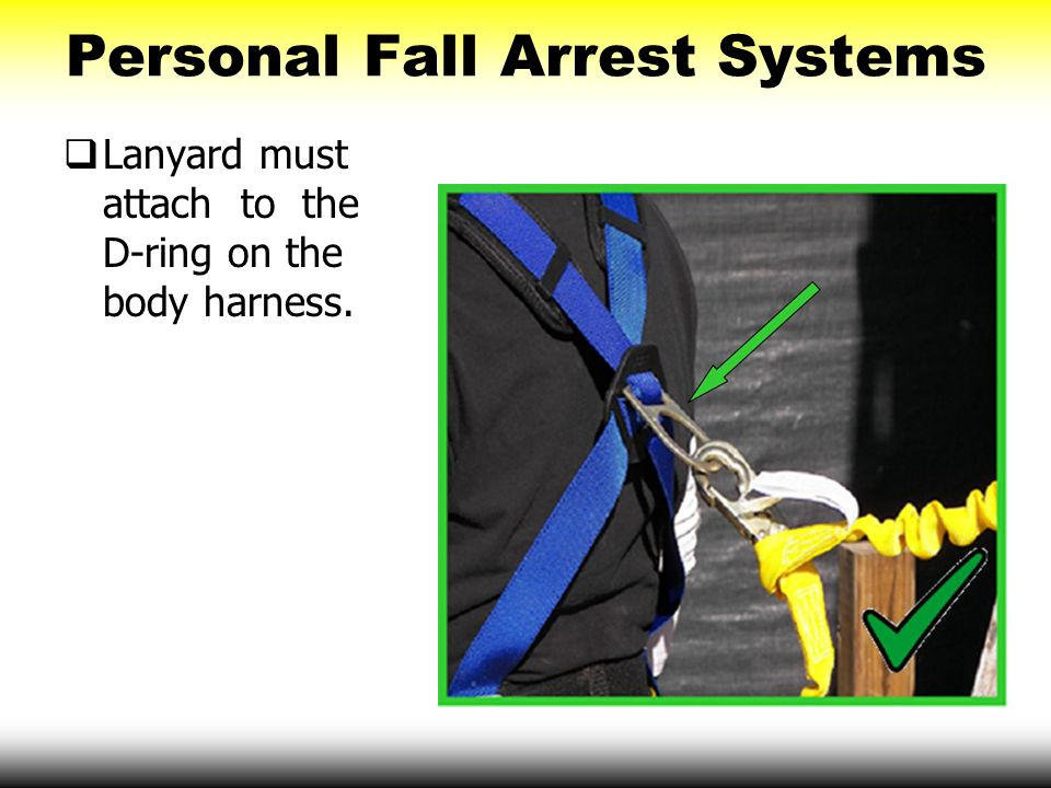 Personal Fall Arrest Systems  Lanyard must attach to the D-ring on the body harness.