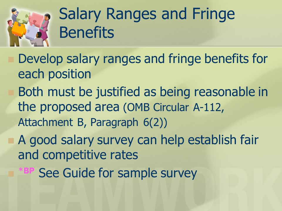 Salary Ranges and Fringe Benefits Develop salary ranges and fringe benefits for each position Both must be justified as being reasonable in the propos