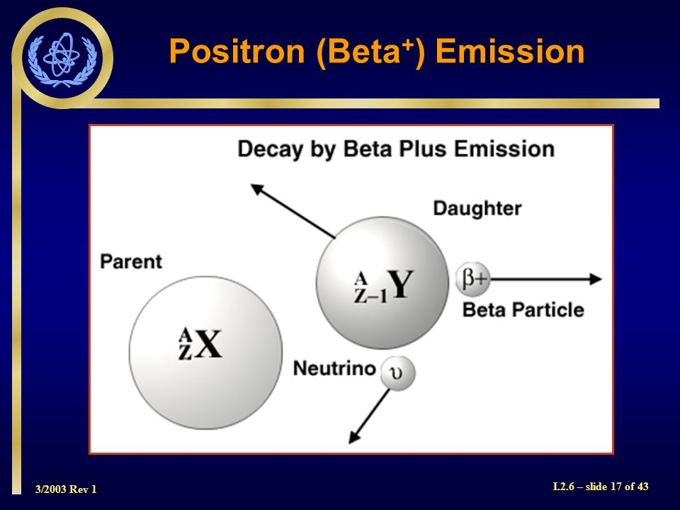 3/2003 Rev 1 I.2.6 – slide 17 of 43 Positron (Beta + ) Emission