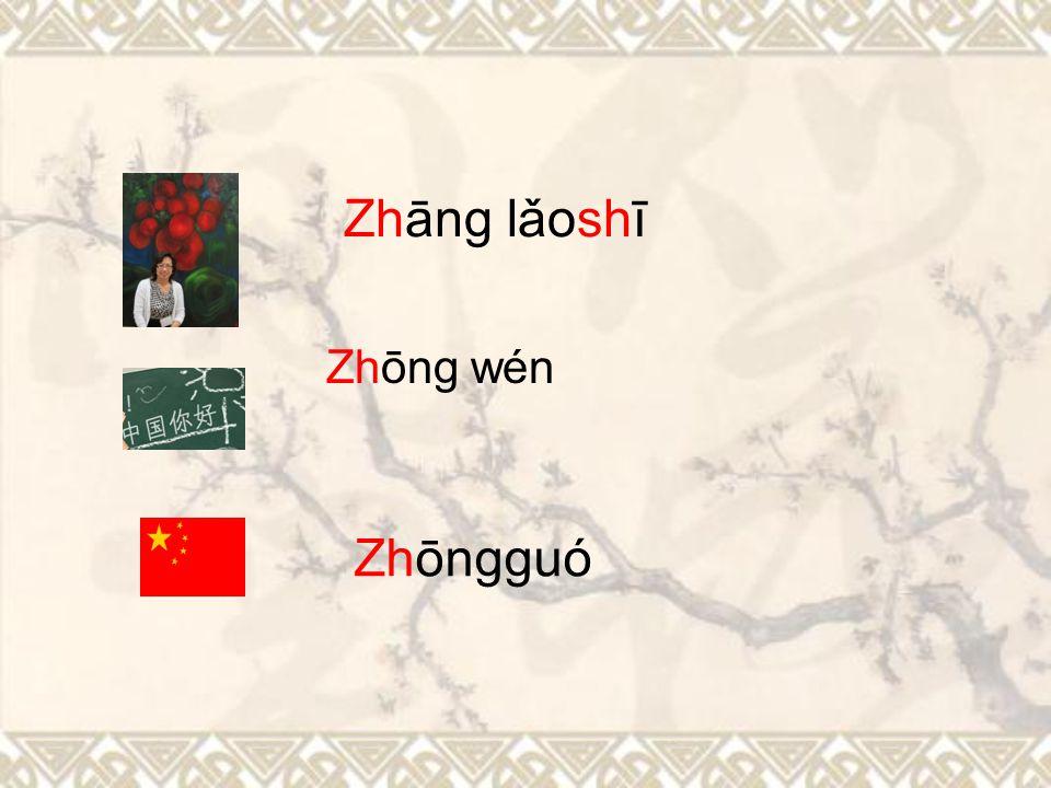 "The 7 initials ""zh ch sh r z c s"" have very unique sound. They are pronounced as zhī chī shī rī zī cī sī The 3 initials ""j q x"" have very unique sound"