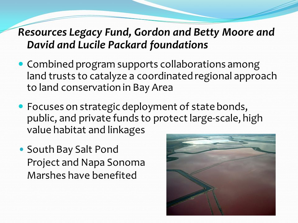Resources Legacy Fund, Gordon and Betty Moore and David and Lucile Packard foundations Combined program supports collaborations among land trusts to catalyze a coordinated regional approach to land conservation in Bay Area Focuses on strategic deployment of state bonds, public, and private funds to protect large-scale, high value habitat and linkages South Bay Salt Pond Project and Napa Sonoma Marshes have benefited