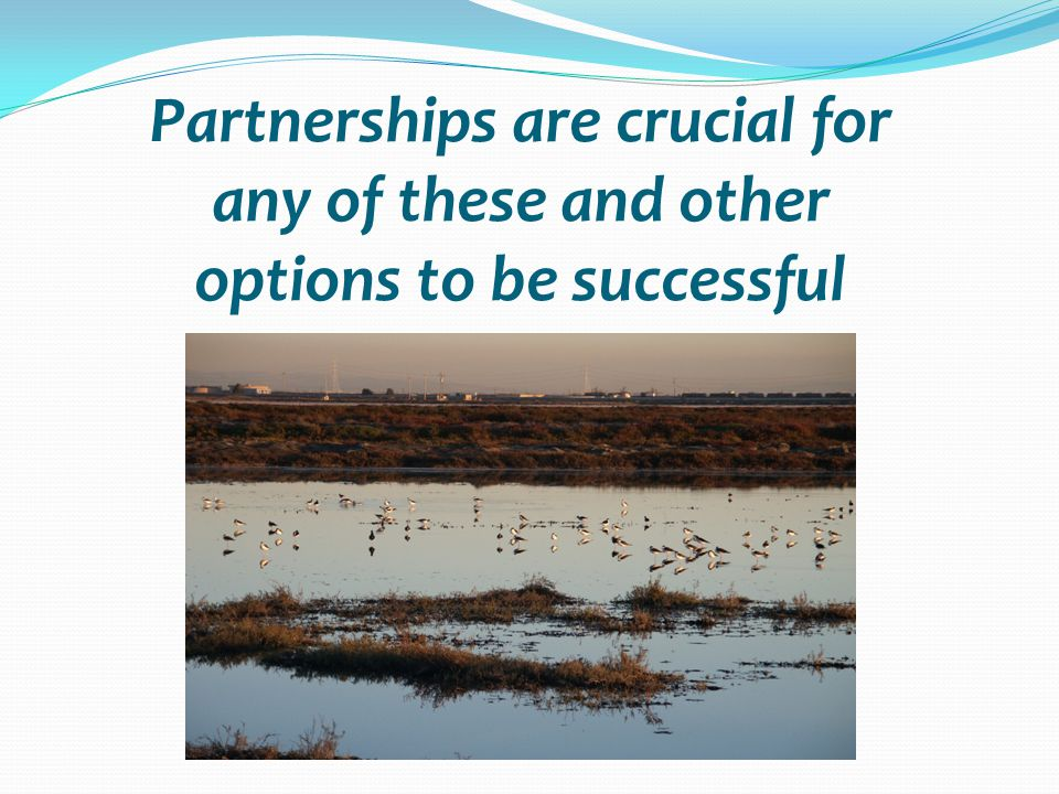 Partnerships are crucial for any of these and other options to be successful