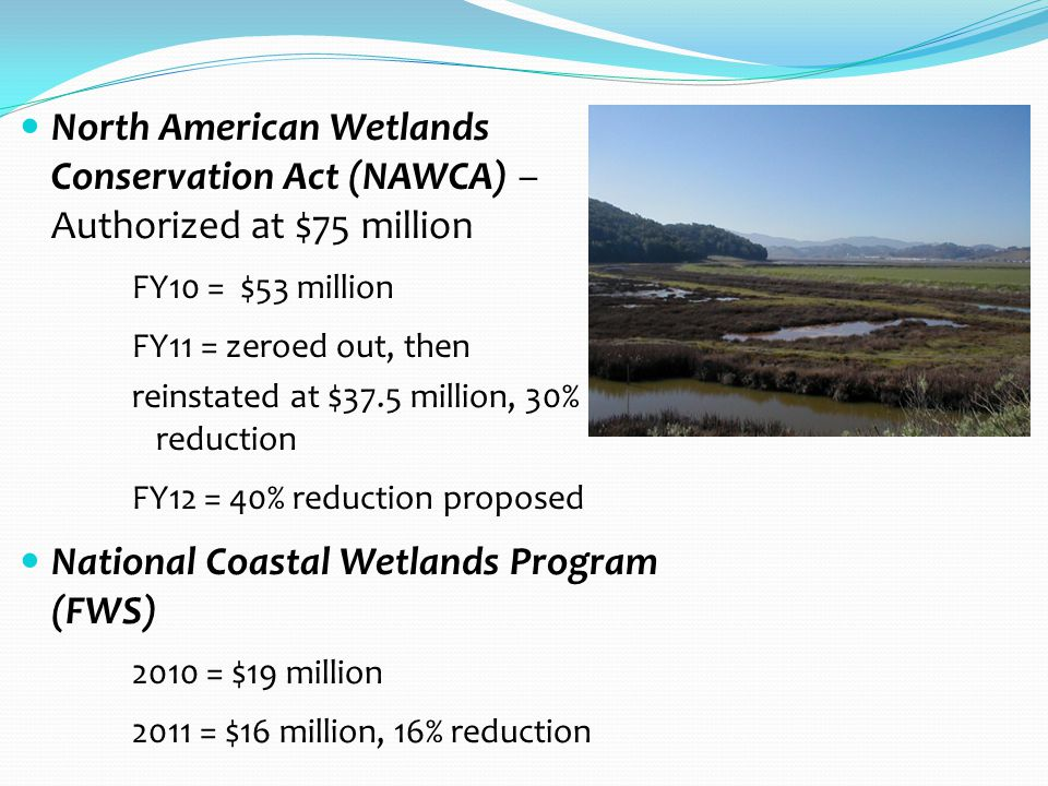North American Wetlands Conservation Act (NAWCA) – Authorized at $75 million FY10 = $53 million FY11 = zeroed out, then reinstated at $37.5 million, 30% reduction FY12 = 40% reduction proposed National Coastal Wetlands Program (FWS) 2010 = $19 million 2011 = $16 million, 16% reduction
