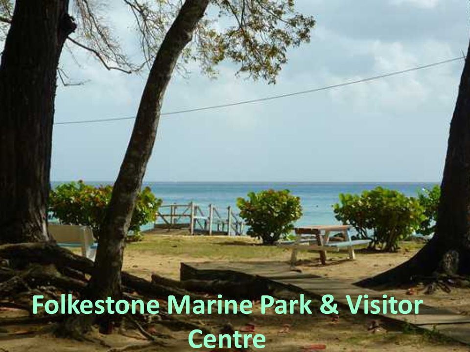Folkestone Marine Park & Visitor Centre