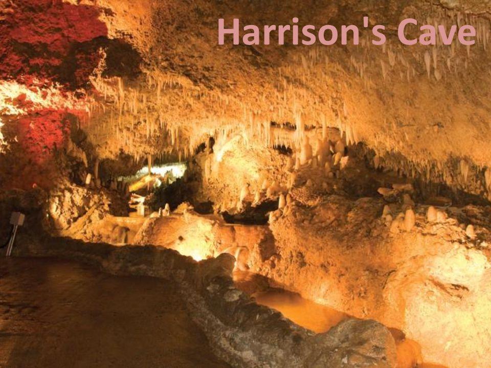 Harrison s Cave