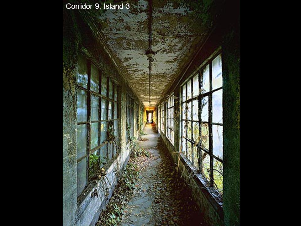 Corridor 9, Island 3