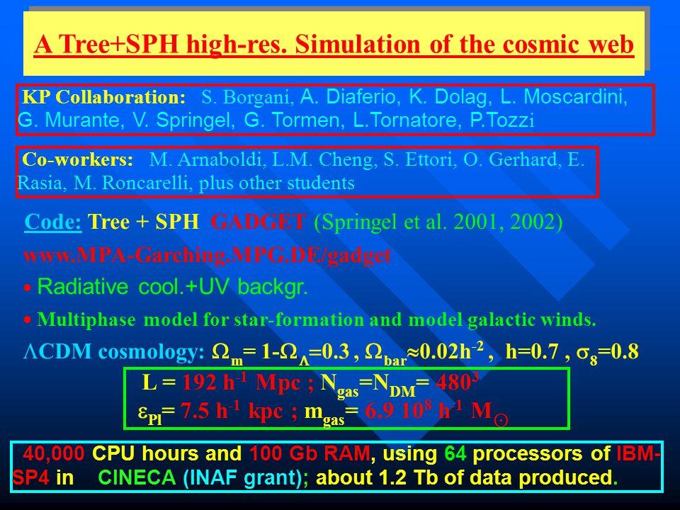 A Tree+SPH high-res. Simulation of the cosmic web KP Collaboration: S. Borgani, A. Diaferio, K. Dolag, L. Moscardini, G. Murante, V. Springel, G. Torm