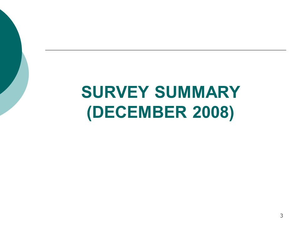 SURVEY SUMMARY (DECEMBER 2008) 3