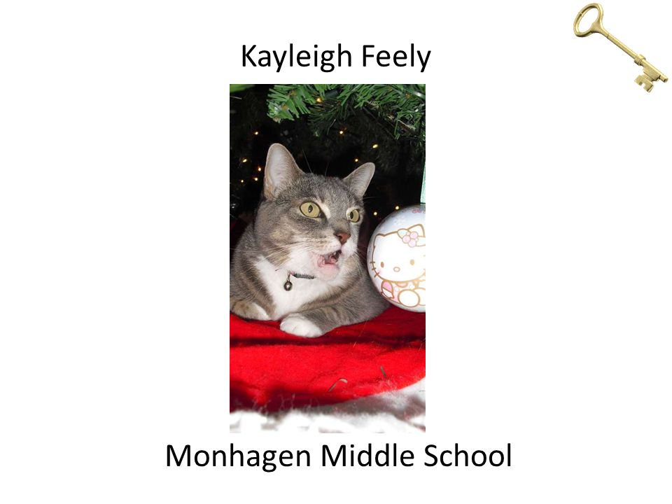 Kayleigh Feely Monhagen Middle School