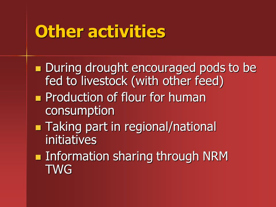 Other activities During drought encouraged pods to be fed to livestock (with other feed) During drought encouraged pods to be fed to livestock (with other feed) Production of flour for human consumption Production of flour for human consumption Taking part in regional/national initiatives Taking part in regional/national initiatives Information sharing through NRM TWG Information sharing through NRM TWG