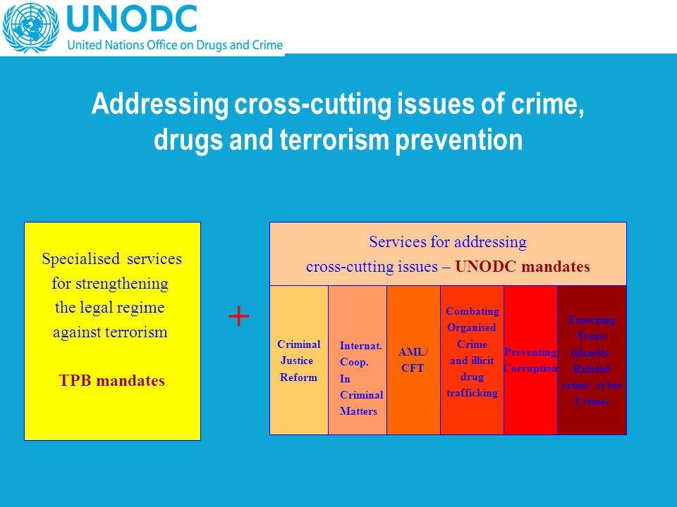 Addressing cross-cutting issues of crime, drugs and terrorism prevention Specialised services for strengthening the legal regime against terrorism TPB