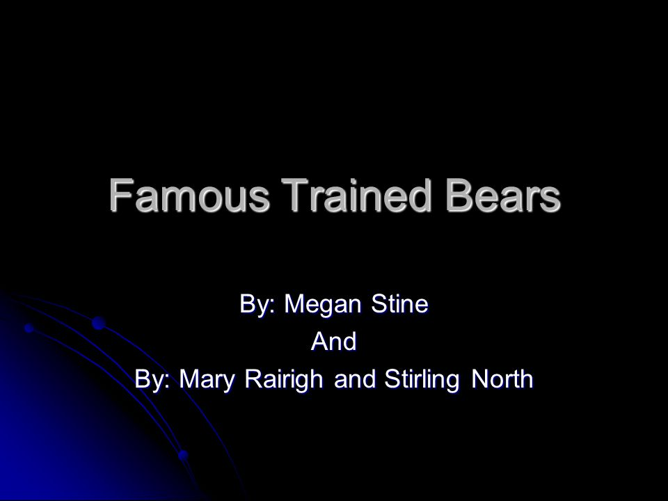 Famous Trained Bears By: Megan Stine And By: Mary Rairigh and Stirling North