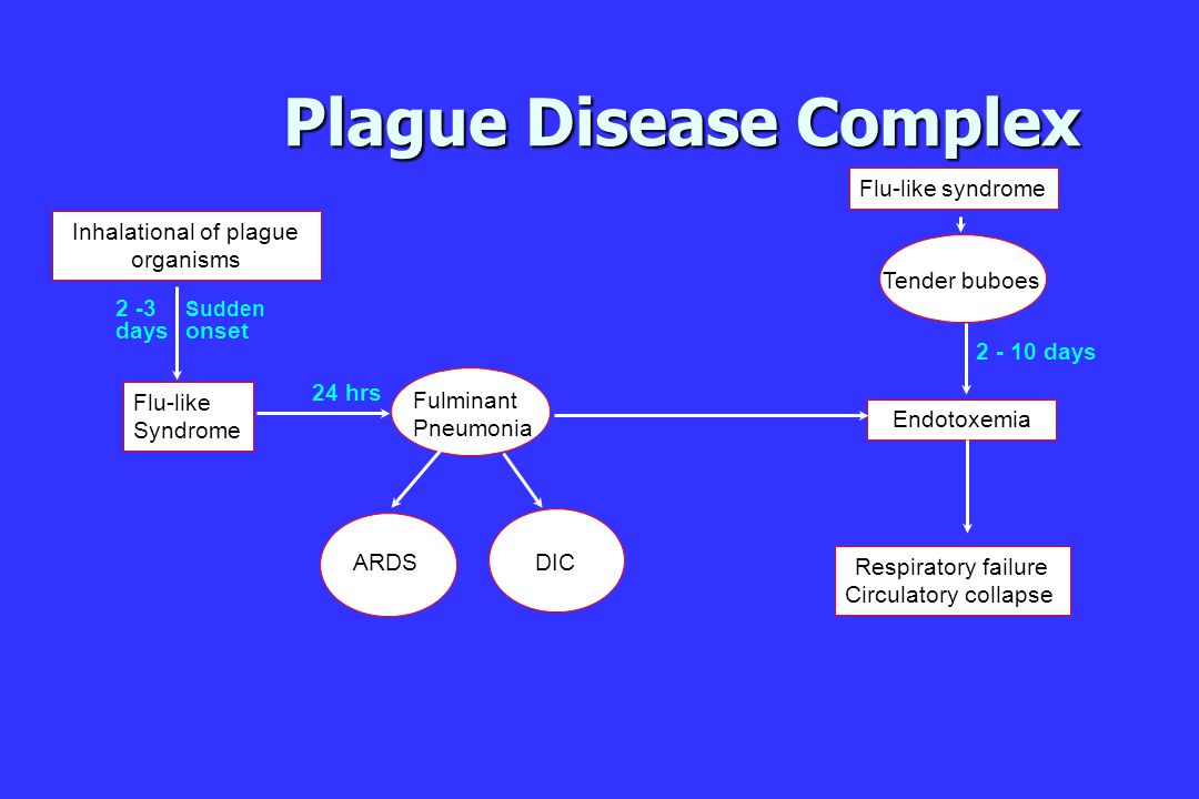 Plague Disease Complex ARDS DIC Fulminant Pneumonia Flu-like Syndrome Sudden onset 2 -3 days 24 hrs Inhalational of plague organisms Endotoxemia Respiratory failure Circulatory collapse Flu-like syndrome Tender buboes 2 - 10 days