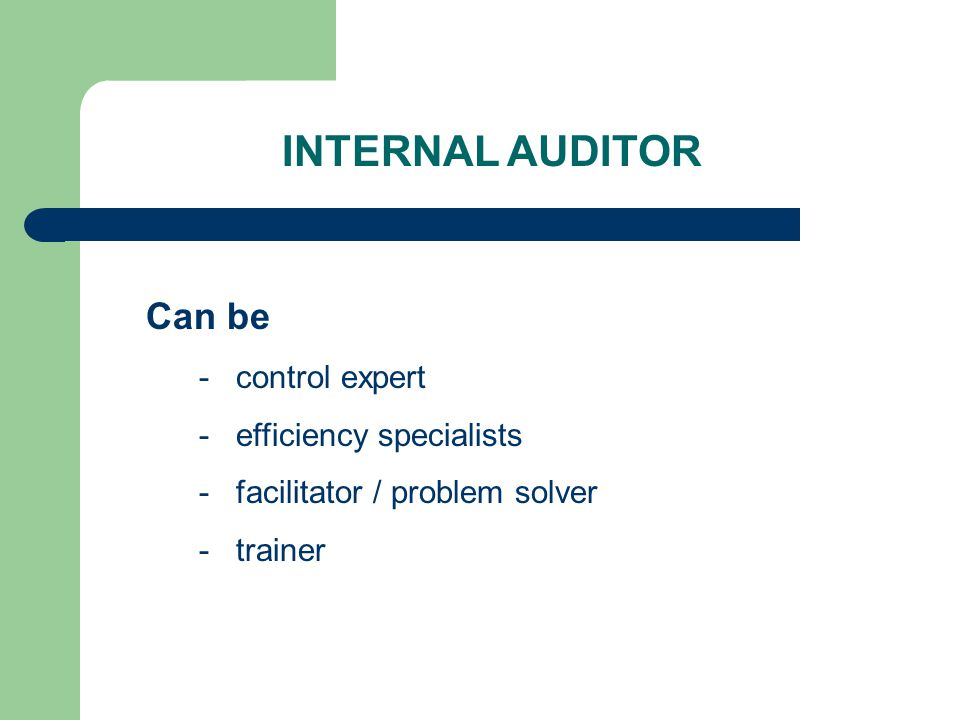 INTERNAL AUDITOR Can be - control expert - efficiency specialists - facilitator / problem solver - trainer