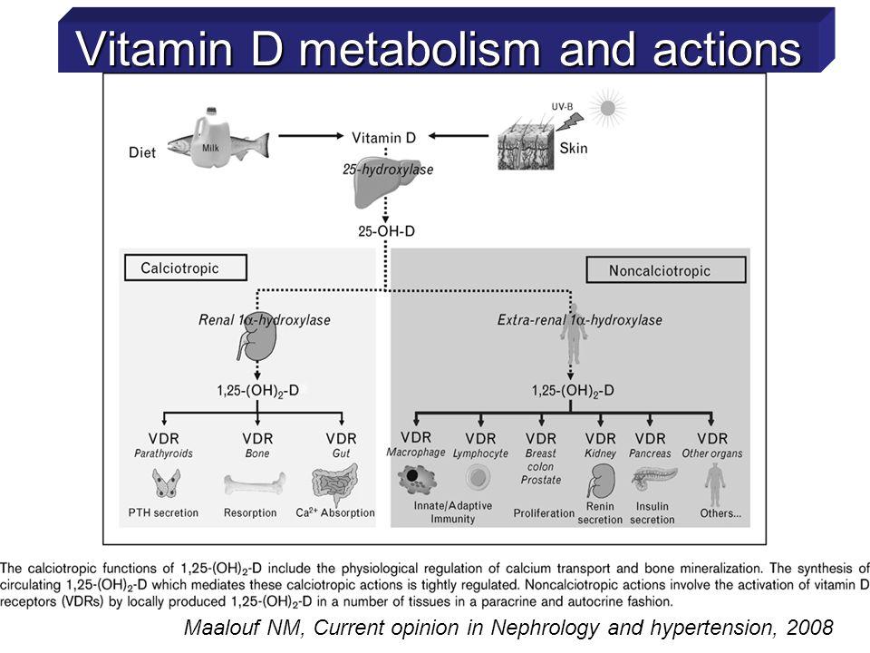 Pittas AG et al, Diabetes Care, 33(9) 2010