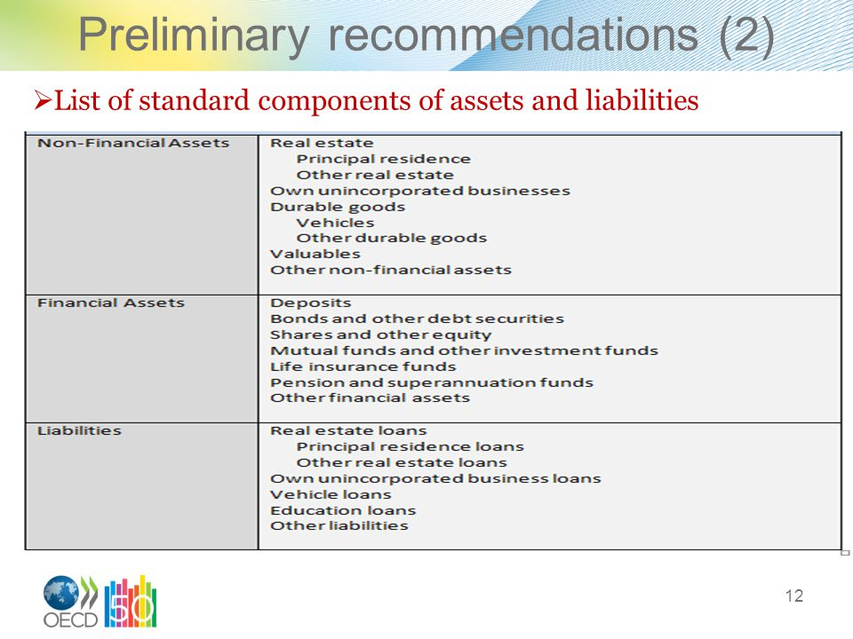 Preliminary recommendations (2) 12  List of standard components of assets and liabilities